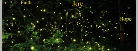 Glimpses of Joy